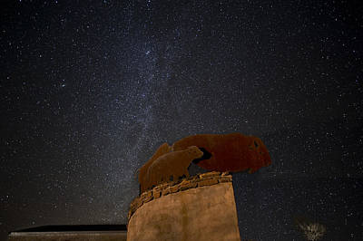 Photograph - Milkyway And Bison by Melany Sarafis