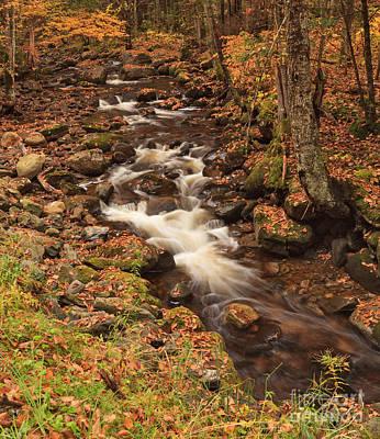 Brook Photograph - Mill Brook Cascade by Charles Kozierok