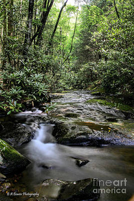 Photograph - Mill Creek by Barbara Bowen