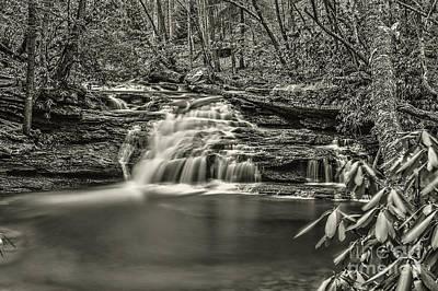 Photograph - Mill Creek Falls by Dan Friend