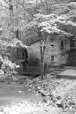 Corn mill art page 6 of 15 fine art america corn mill photograph mill in the woods by dwight cook ccuart Images