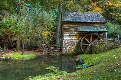 Mill Pond In Woods Art Print