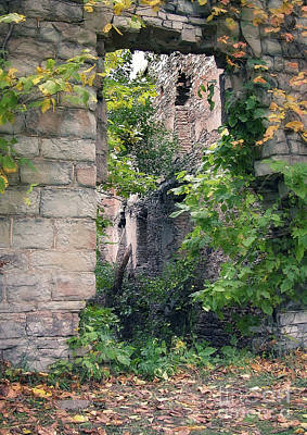 Photograph - Mill Ruins by Tom Brickhouse
