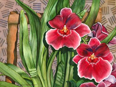 Miltonia Orchids Art Print