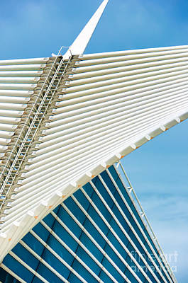Photograph - Milwaukee Art Museum by David Perry Lawrence