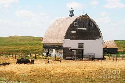 Minden Nebraska Old Farm And Barn Art Print by PainterArtist FIN