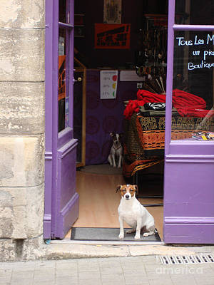 Minding The Shop. Two French Dogs In Boutique Art Print