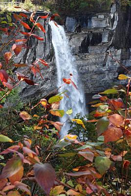 Photograph - Mine Creek Falls by John Schneider