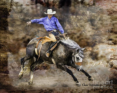 Photograph - Mineola Rodeo Bronc Rider by Char Doonan