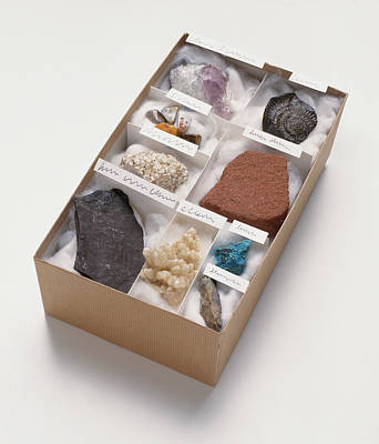 Mineral And Rock Samples Art Print