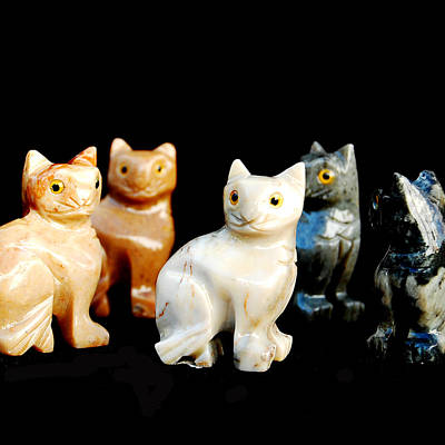 Piece Digital Art - Mineral Cats  by Gina Dsgn