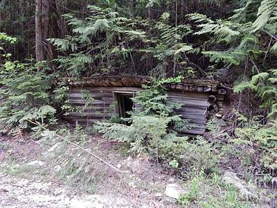 Photograph - Miners Cabin British Columbia by Reb Frost