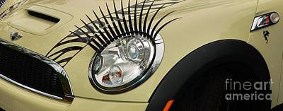 Photograph - Mini Eye Lash by Bob Sample
