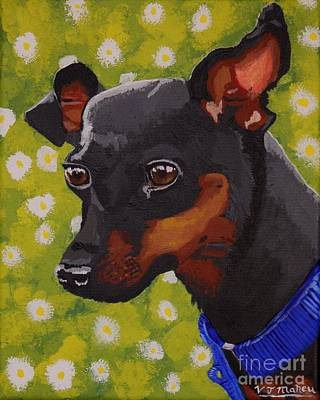 Painting - Mini Pinscher  by Vicki Maheu