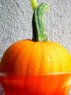 Photograph - Mini Pumpkin Still Life by Jeff Lowe