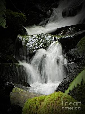Neurotic Images Photograph - Mini Waterfall 2 by Chalet Roome-Rigdon