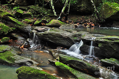 Mini Waterfalls Print by Kaye Menner