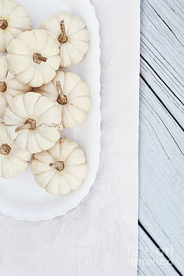 Wooden Platter Photograph - Mini White Pumpkins by Stephanie Frey