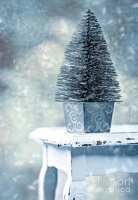 Falling Snow Photograph - Miniature Christmas Tree by Amanda Elwell