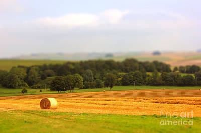 Miniature Countryside Art Print by Vicki Spindler