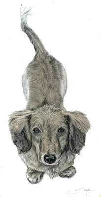 Realistic Miniatures Painting - Miniature Dachshund Puppy by Elizabeth Sage