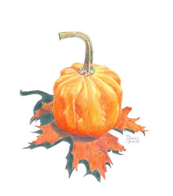 Drawing - Miniature Pumpkin On Oak Leaf Still Life by Dominic White