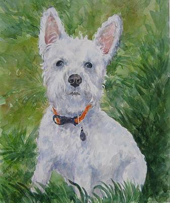 Painting - Miniature Schnauzer by Gloria Turner