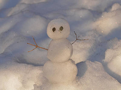 Miniature Snowman Landscape Art Print by Nancy Landry