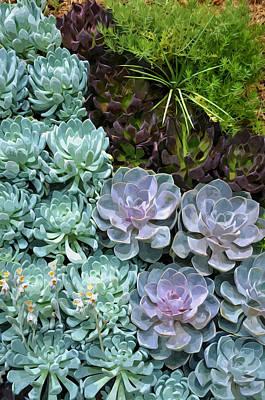 Sempervivum Painting - Miniature Succulent Plants 1 by Lanjee Chee