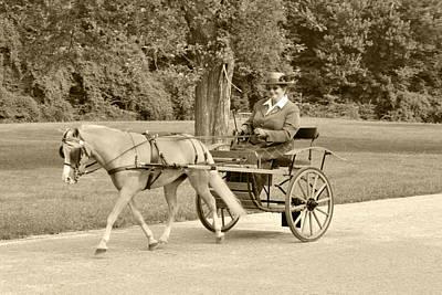 Miniature Two Wheel Cart Print by Wayne Sheeler