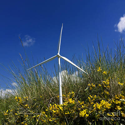 Miniature Wind Turbine In Nature Art Print