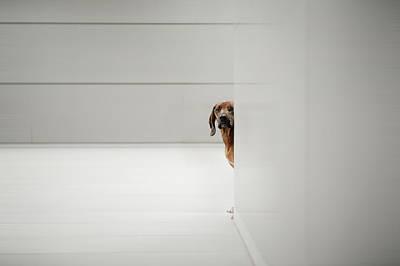 Minimalism Photograph - Minimalismus by Heike Willers