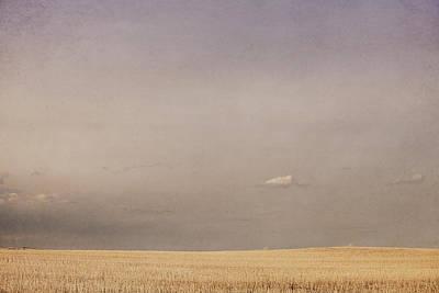 Minimalist Landscape Of A Prairie Grain Print by Roberta Murray