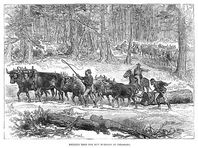 Mining Camp Logs, 1880 Art Print