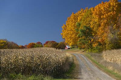 Photograph - Minnesota Autumn Road by Garry McMichael