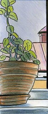 Drawing - Mint Window by Lelia Sorokina