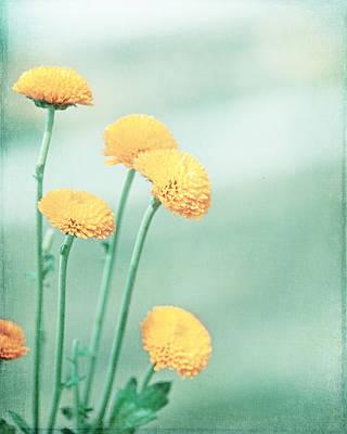Bold Expressive Floral Photograph - Minty Fresh by Carolyn Cochrane