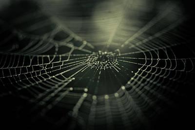 Black Spider Photograph - Minus Zero by Shane Holsclaw