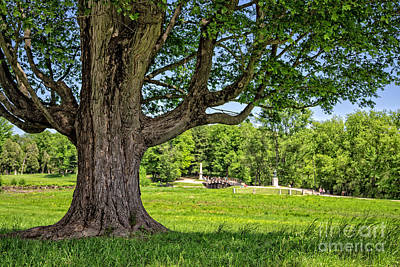 Concord Photograph - Minute Man National Historical Park  by Edward Fielding