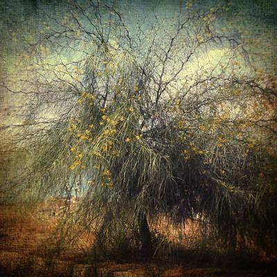 Photograph - Mirage by Taylan Apukovska