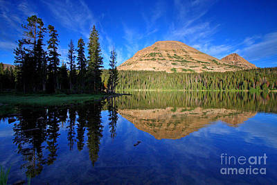 Photograph - Mirror Lake by Bill Singleton