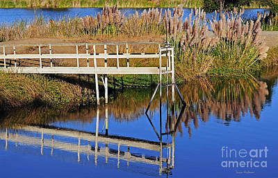 Photograph - Mirror Lake by Susan Wiedmann