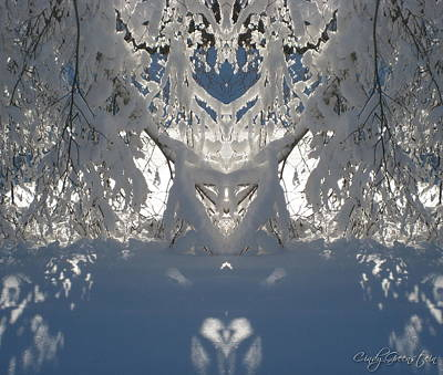 Cindy Photograph - Mirror Of Snow  by Cindy Greenstein