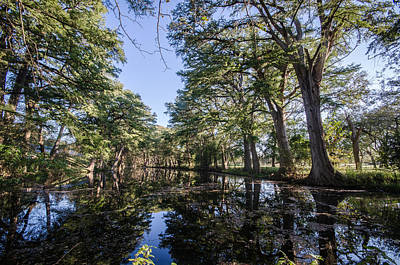 Photograph - Mirror On The Frio by Jeffrey W Spencer