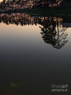 Photograph - Mirrored In by Scott B Bennett