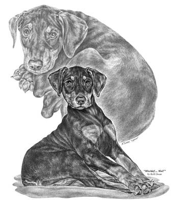 Drawing - Mischief ... Moi? - Doberman Pinscher Puppy  by Kelli Swan