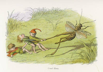 Grasshopper Drawing - Mischievous Elves Pull A Grasshopper's by Mary Evans Picture Library