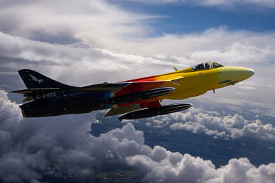 Photograph - Miss Demeanour In Flight by Ken Brannen