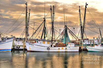Photograph - Miss Hale Shrimp Boat by Scott Hansen