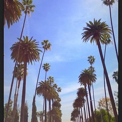Celebs Photograph - Missin La! #hollywood #summer #beach by Jonna Ross